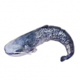 Gaby polštář plyšová ryba sumec 108cm